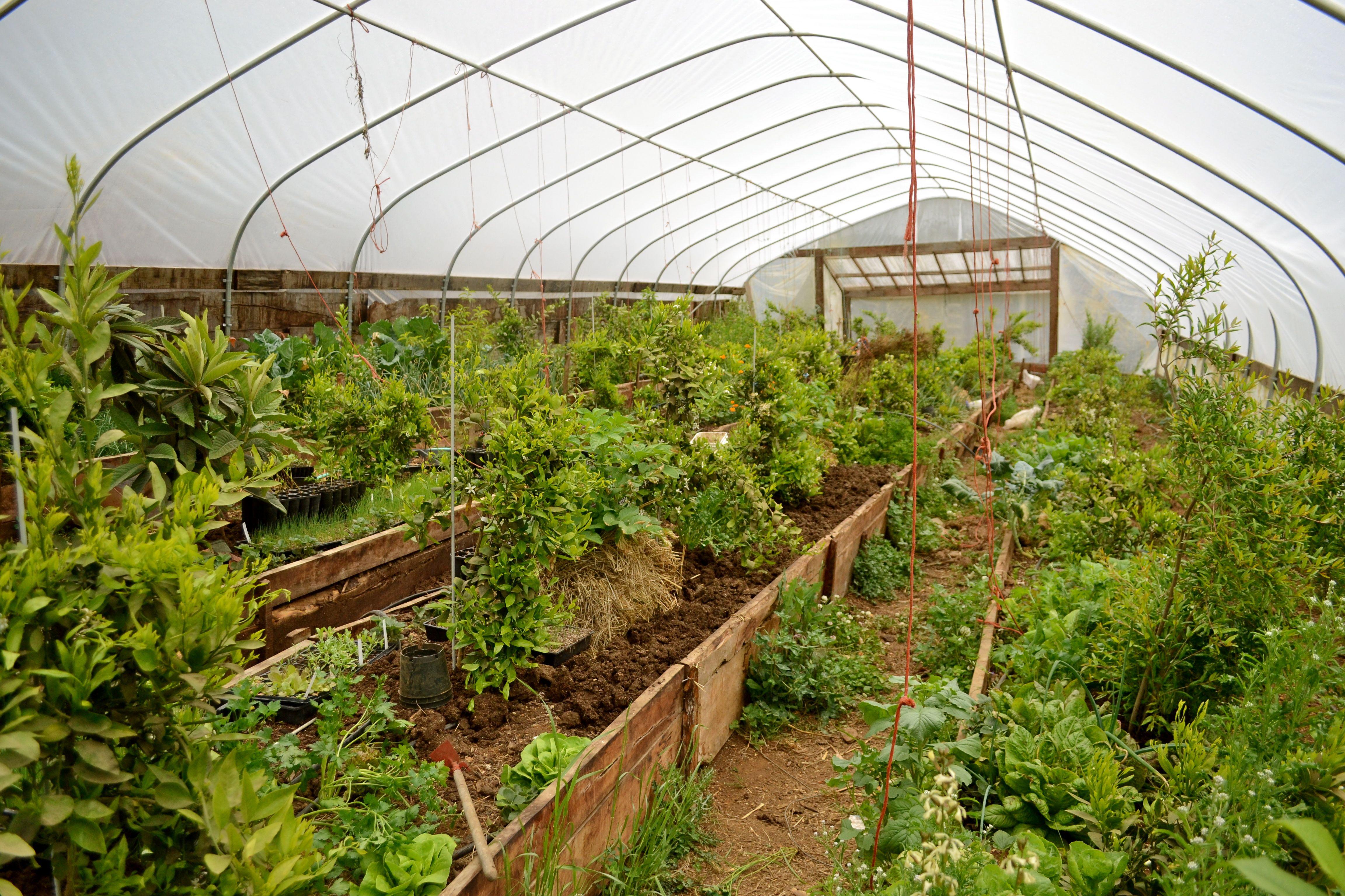 Underground Garden Beds Greenhouse