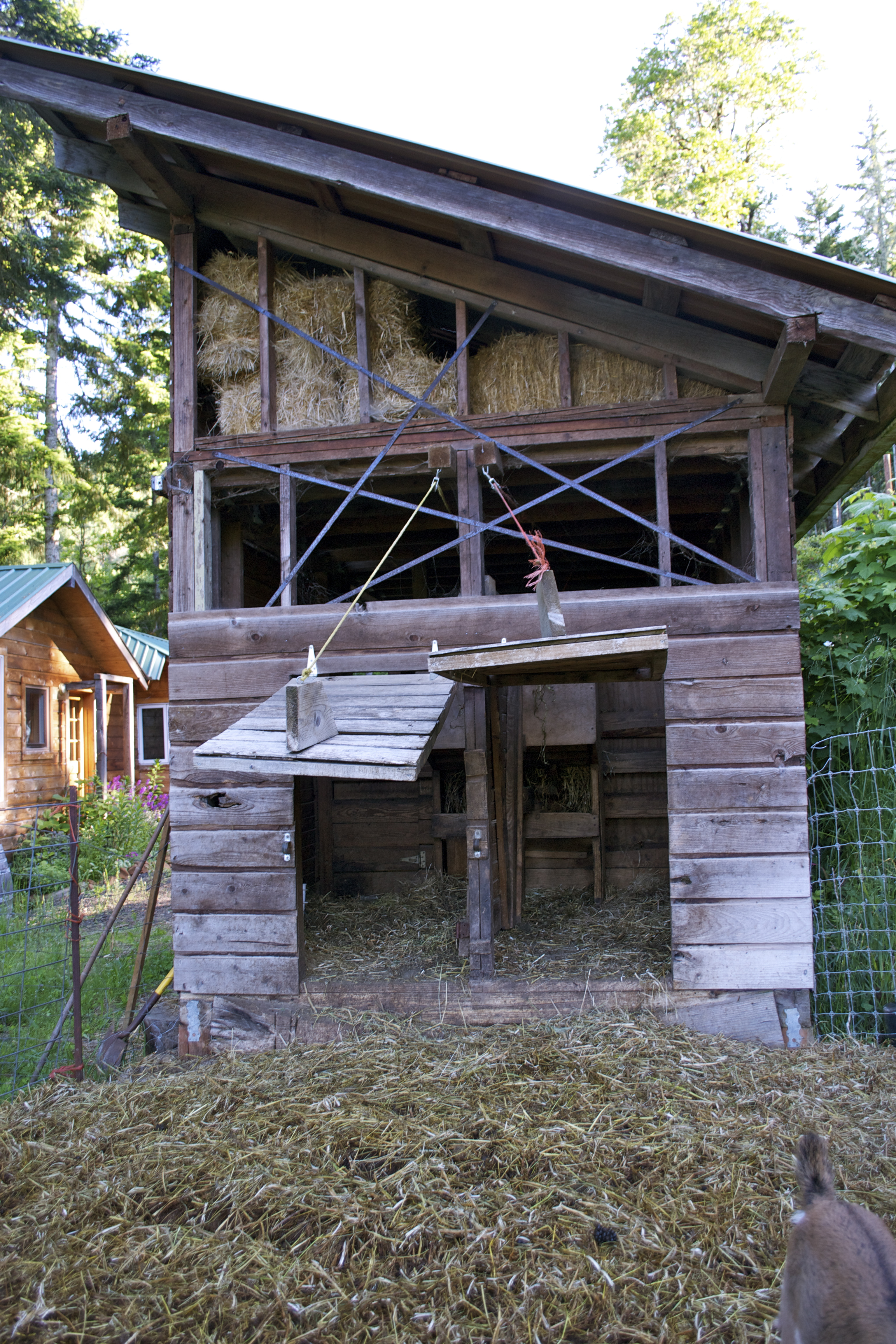 Goat Barn And Hay Storage