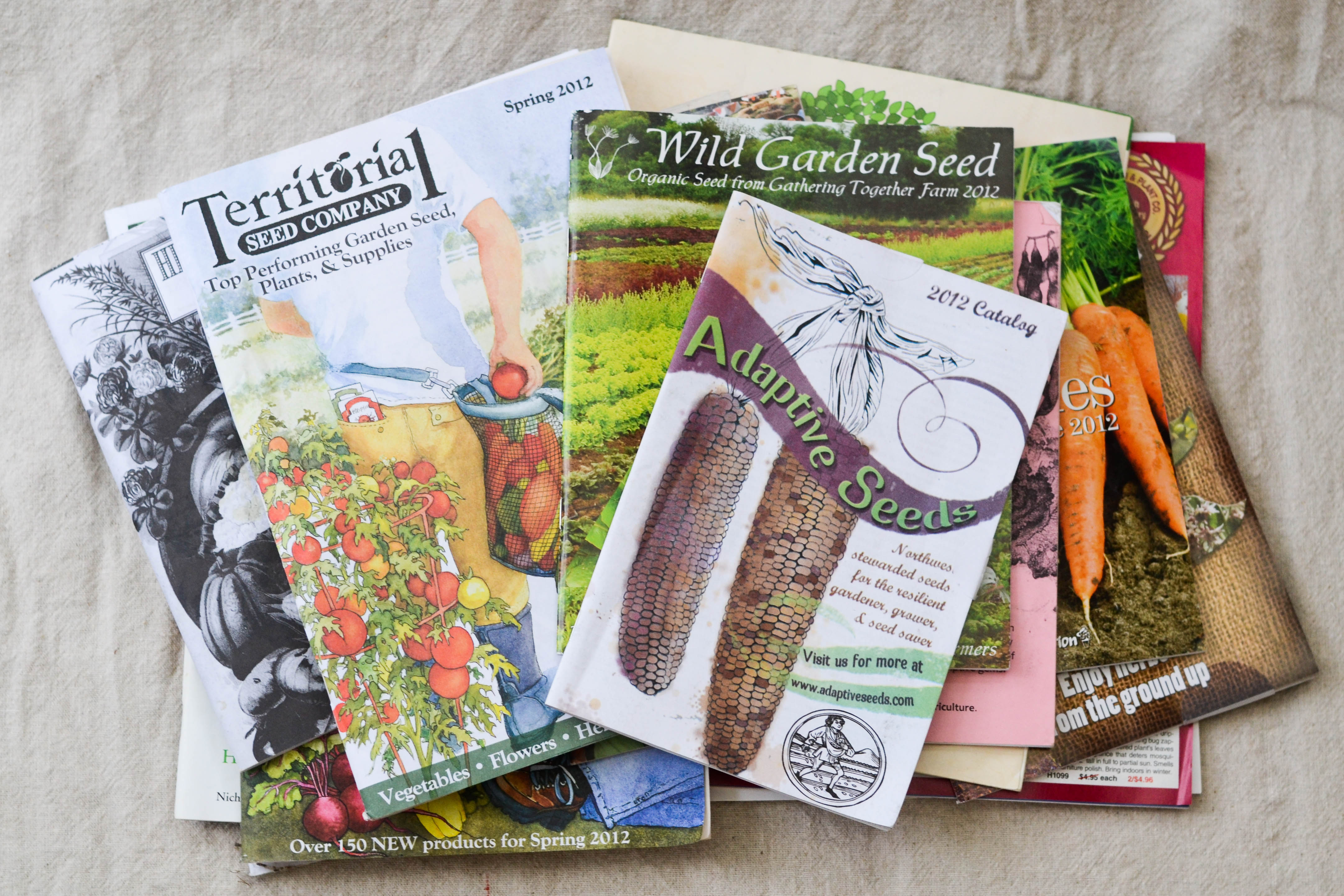 Garden Seed Sources