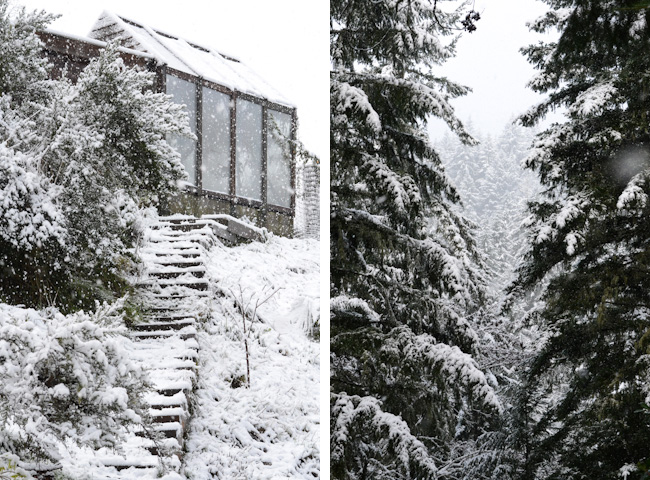 snow-greenhouse
