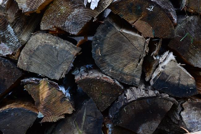 firewood // Wayward Spark