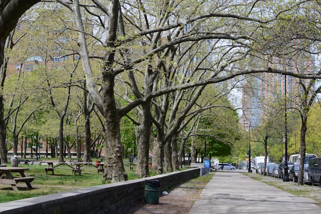 spring in New York // Wayward Spark