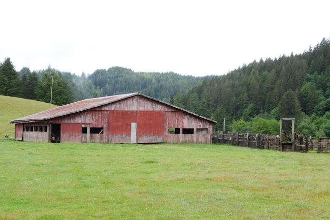 goat barn in Harlan, Oregon // Wayward Spark
