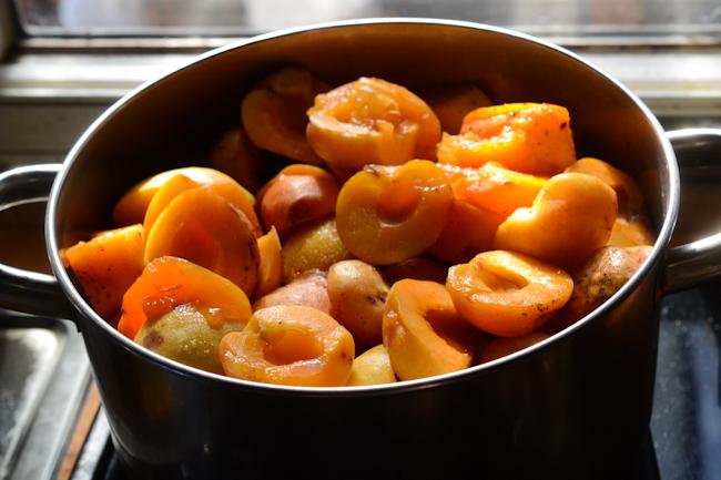 cooking apricot jam // Wayward Spark