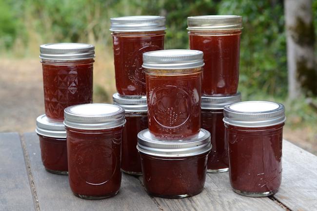 cherry plum sauce // Wayward Spark