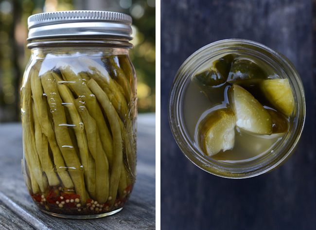 dilly beans and dill pickles from the Marys River Food Swap // Wayward Spark