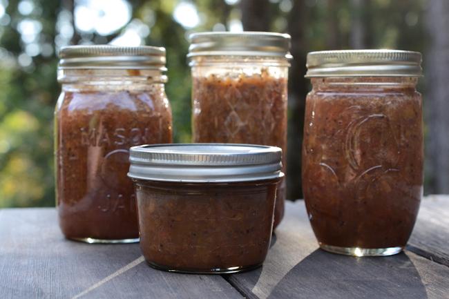 kiwi strawberry jam // Wayward Spark