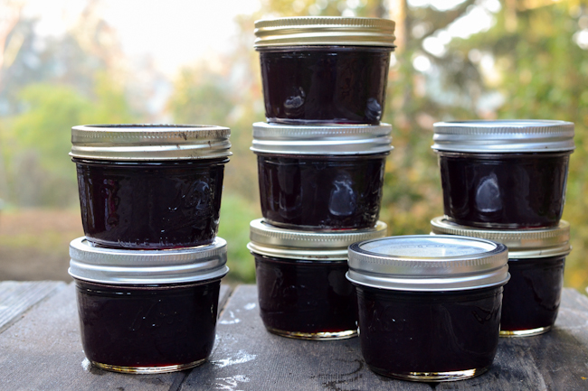 concord grape jelly made with honey // Wayward Spark