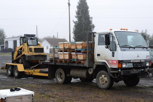 hauling beehives // Wayward Spark