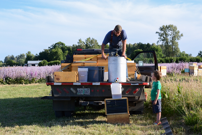 extracting clary sage honey on-site with Old Blue Raw Honey // Wayward Spark