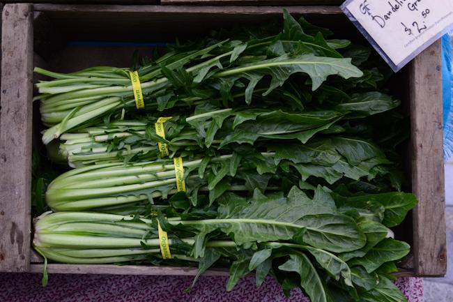 dandelion greens  // Wayward Spark