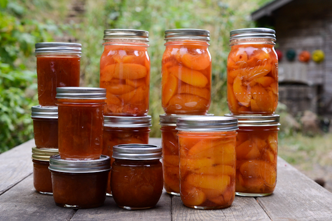 salted brown sugar peach jam and pints of canned peaches // Wayward Spark