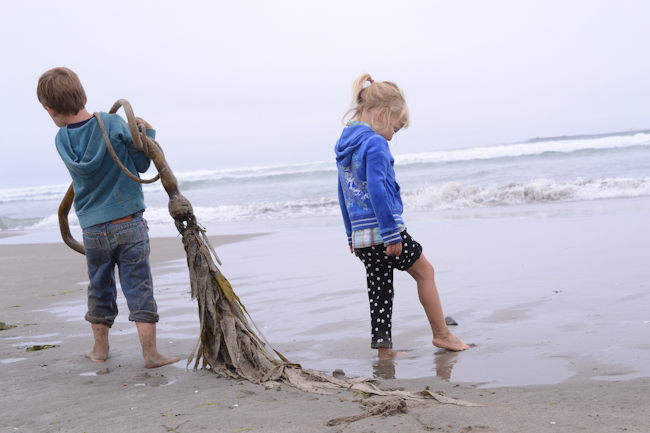 playing with bull kelp at the Oregon Coast // Wayward Spark