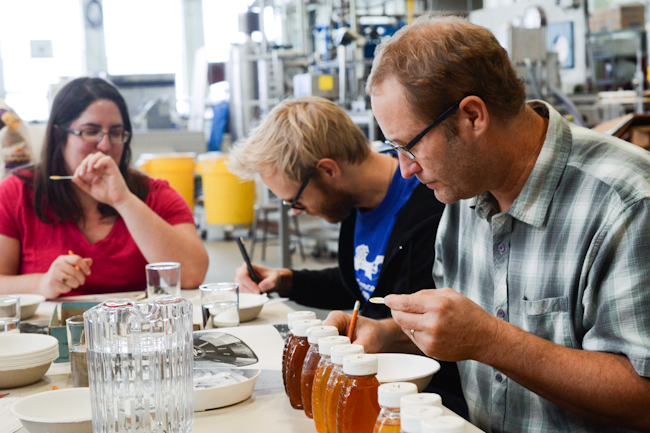 Old Blue Raw Honey tasting at the OSU Food Science lab // Waysard Spark